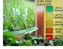 05 Soil Testing for pH
